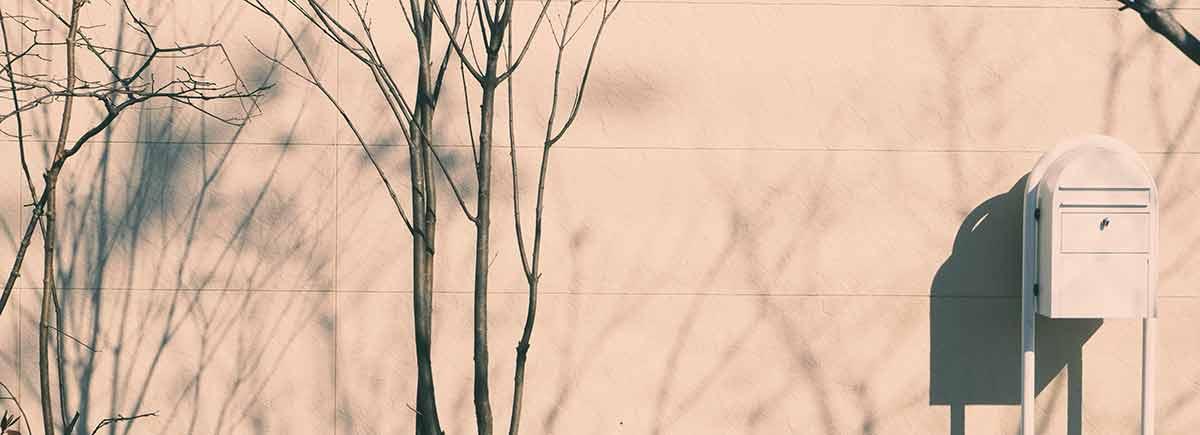 エバーグリーントカチの庭景