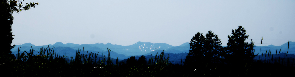 遥かなる山景を望む庭の景